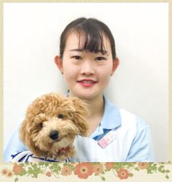 トリマー/動物看護師: 石川 奈実